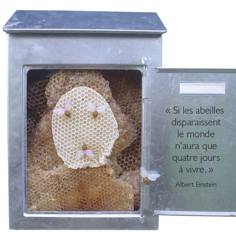 Michel LAFEUILLE